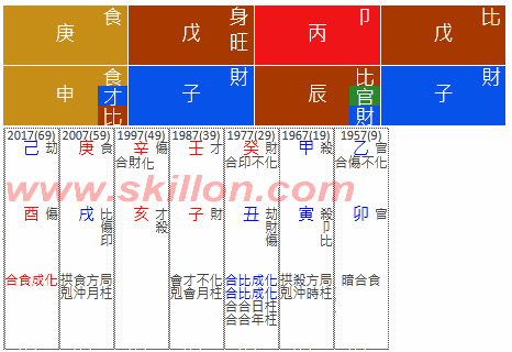 八字 BaZi Four Pillars of Destiny Patt Chee